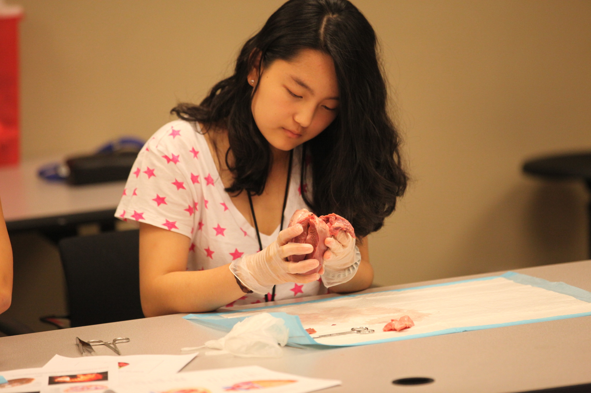 Summer Program - Science | Emory University Summer Pre-College Program: Infectious Diseases Institute
