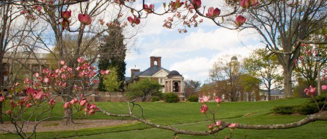 College - Sweet Briar College  1