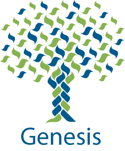 Summer Program Brandeis University Pre-College: Genesis