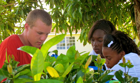 Gap Year Program - The Island School & Cape Eleuthera Institute - Gap Year Program  5
