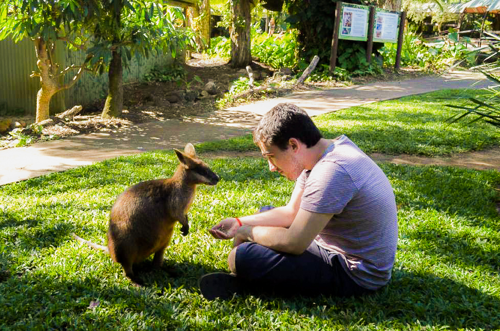 Summer Program - Animal Rights and Rescue | Travel For Teens: Australia Service and Adventure