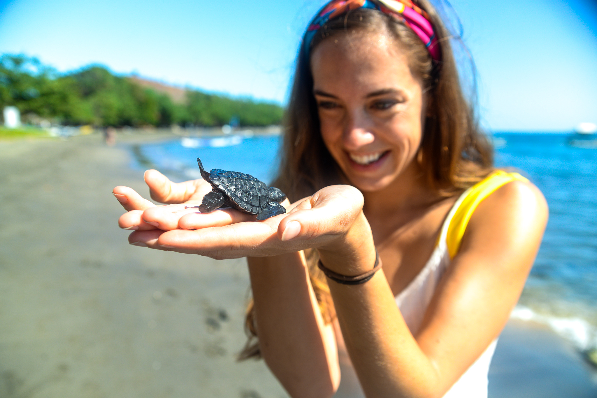 Summer Program - Animal Rights and Rescue | Travel For Teens: Bali Ultimate Service and Adventure