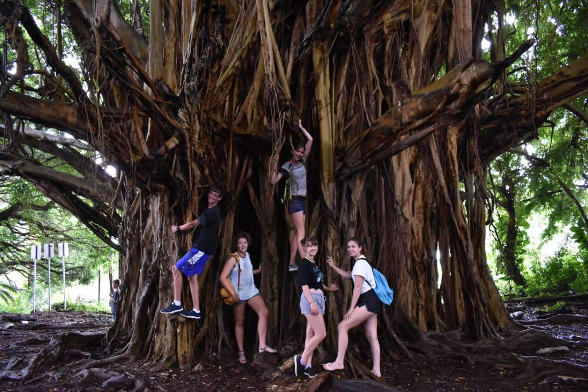 Summer Program - Animal Rights and Rescue | Travel For Teens: Hawaii Ultimate Adventure and Service