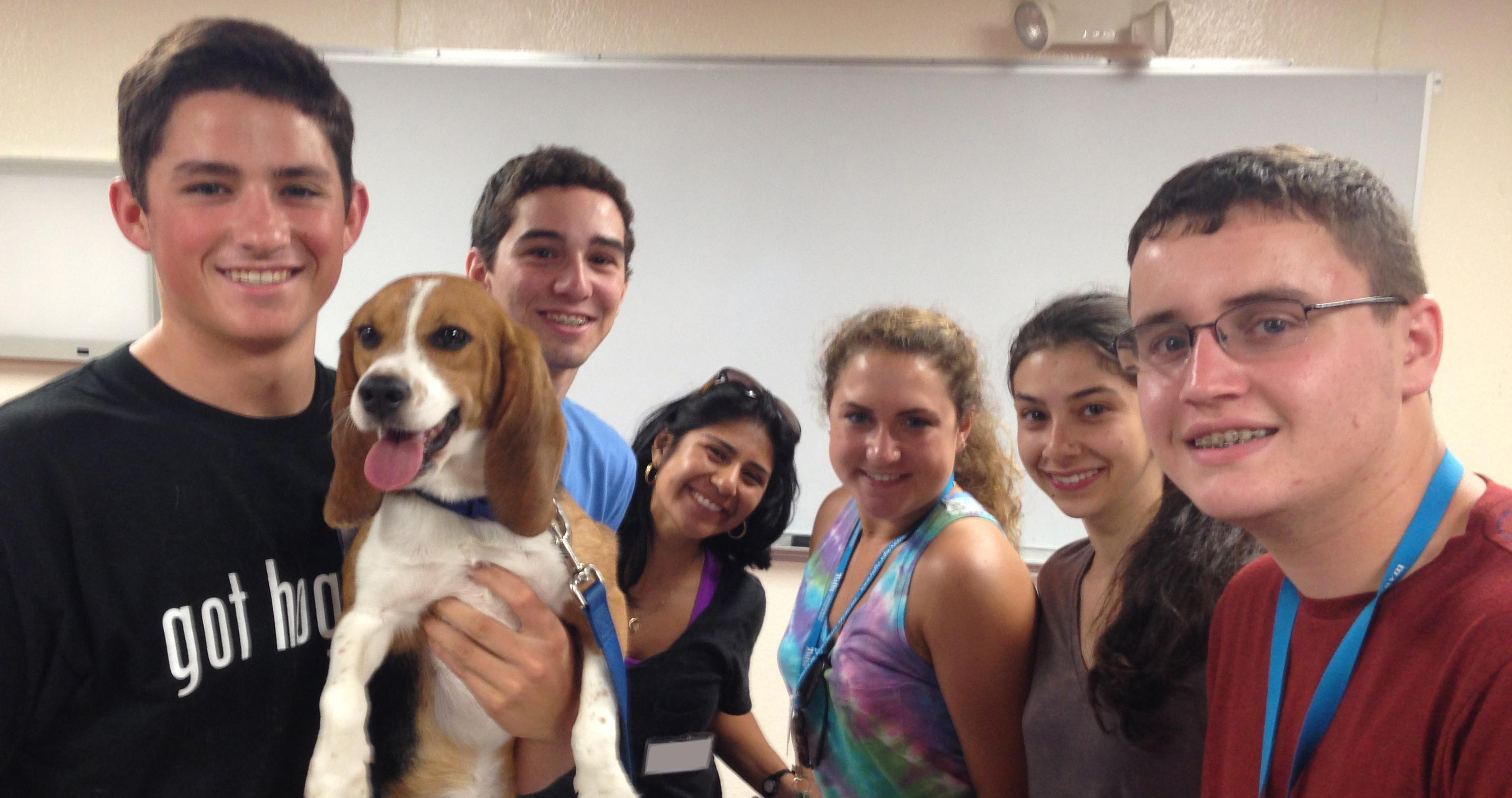 Summer Program - Veterinary Medicine   Tufts University Adventures in Veterinary Medicine: High School Program