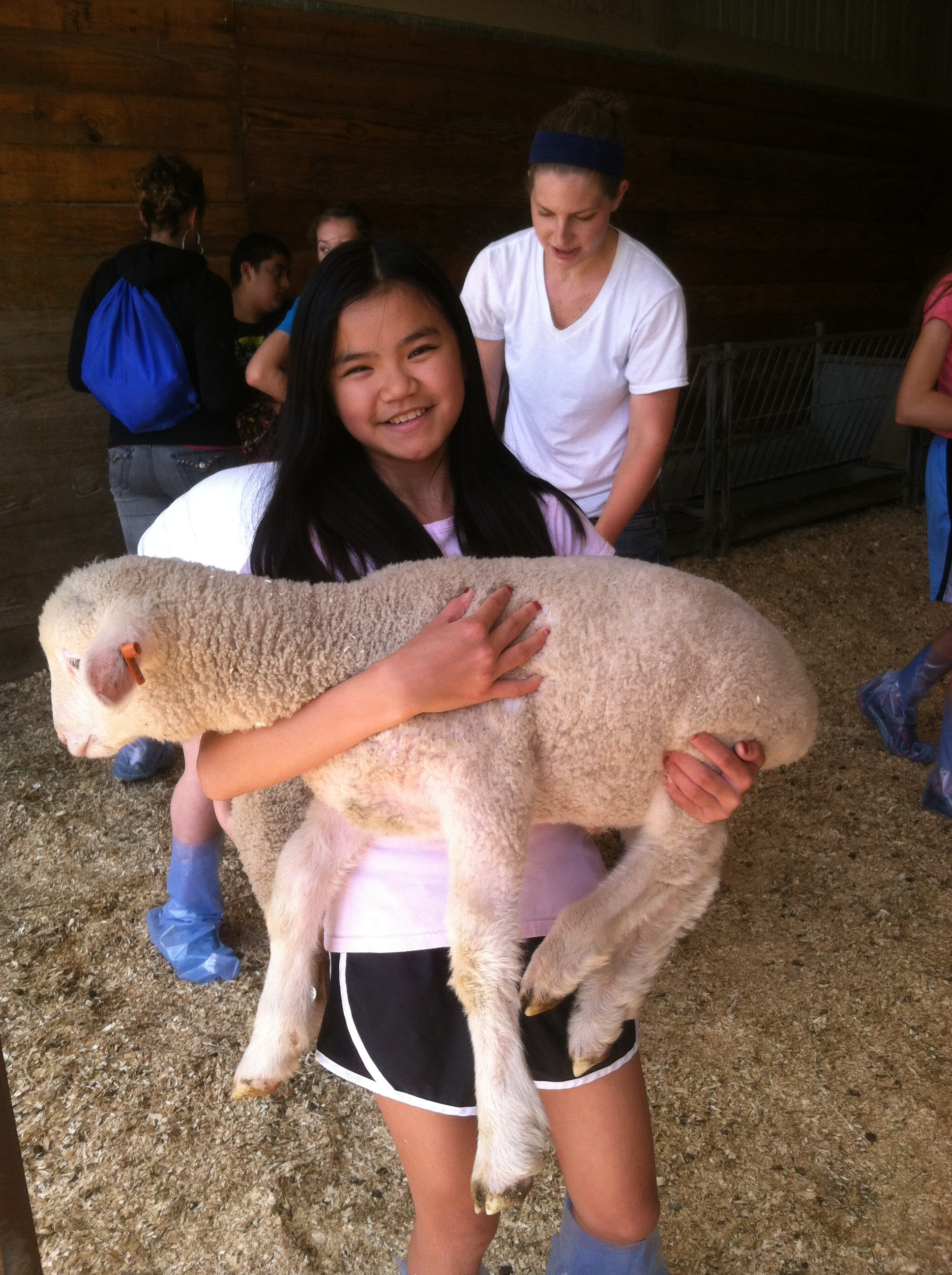 Summer Program - Veterinary Medicine | Tufts University Adventures in Veterinary Medicine: Middle School Program