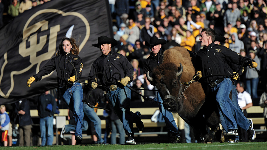 College - University of Colorado Boulder  3