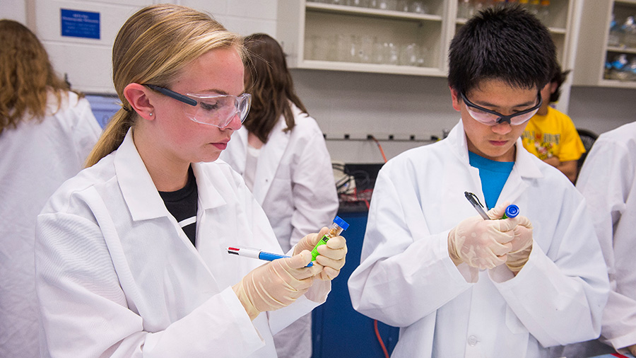 Summer Program - STEM | University of Maryland: Terp Young Scholars-Online (TYS)