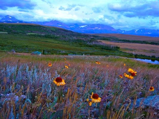 Summer Program - Cultural Organizations | VISIONS Montana Blackfeet High School Service Program
