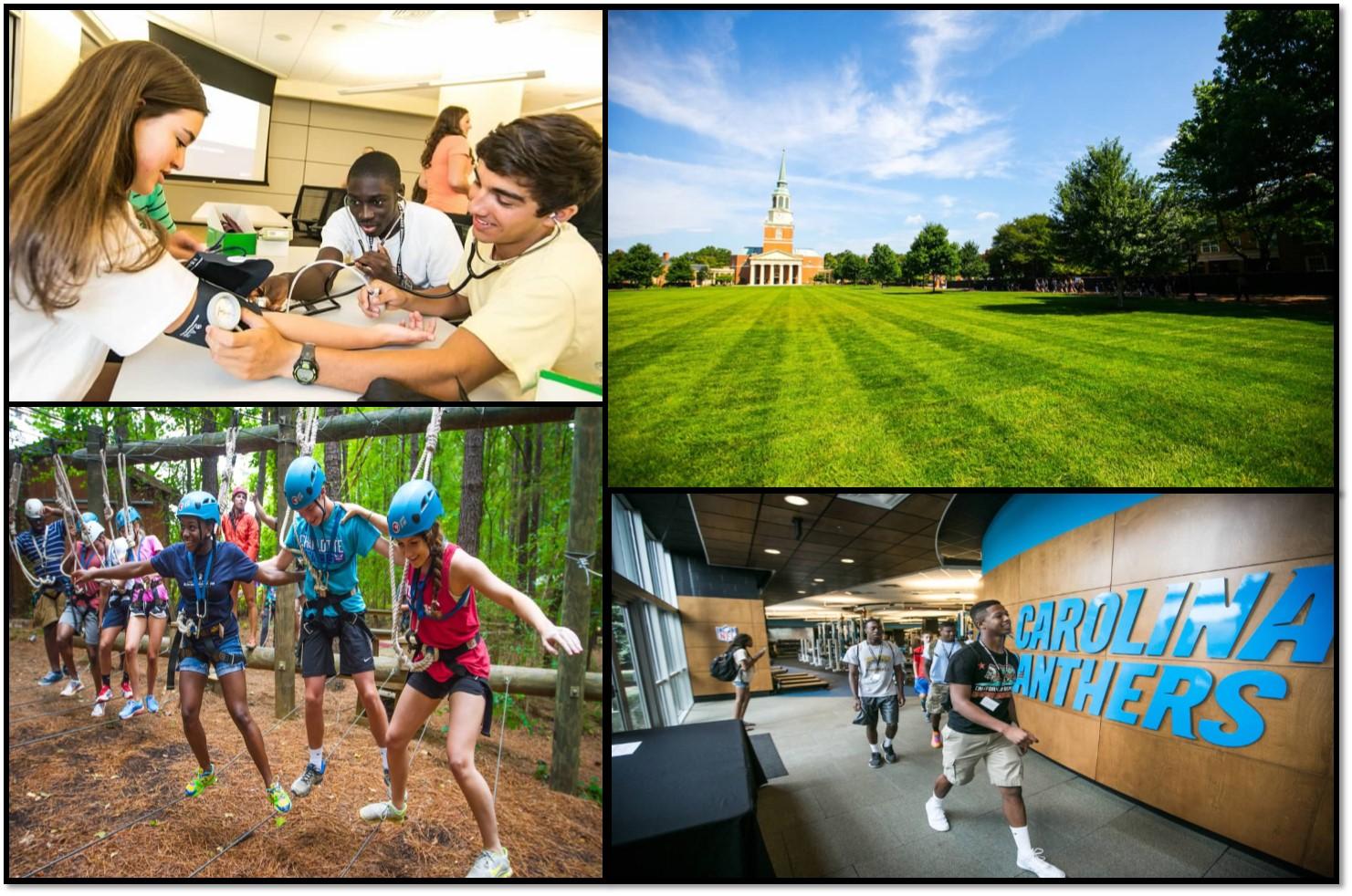 Summer Program - Pre-College | Wake Forest University Summer Immersion Programs