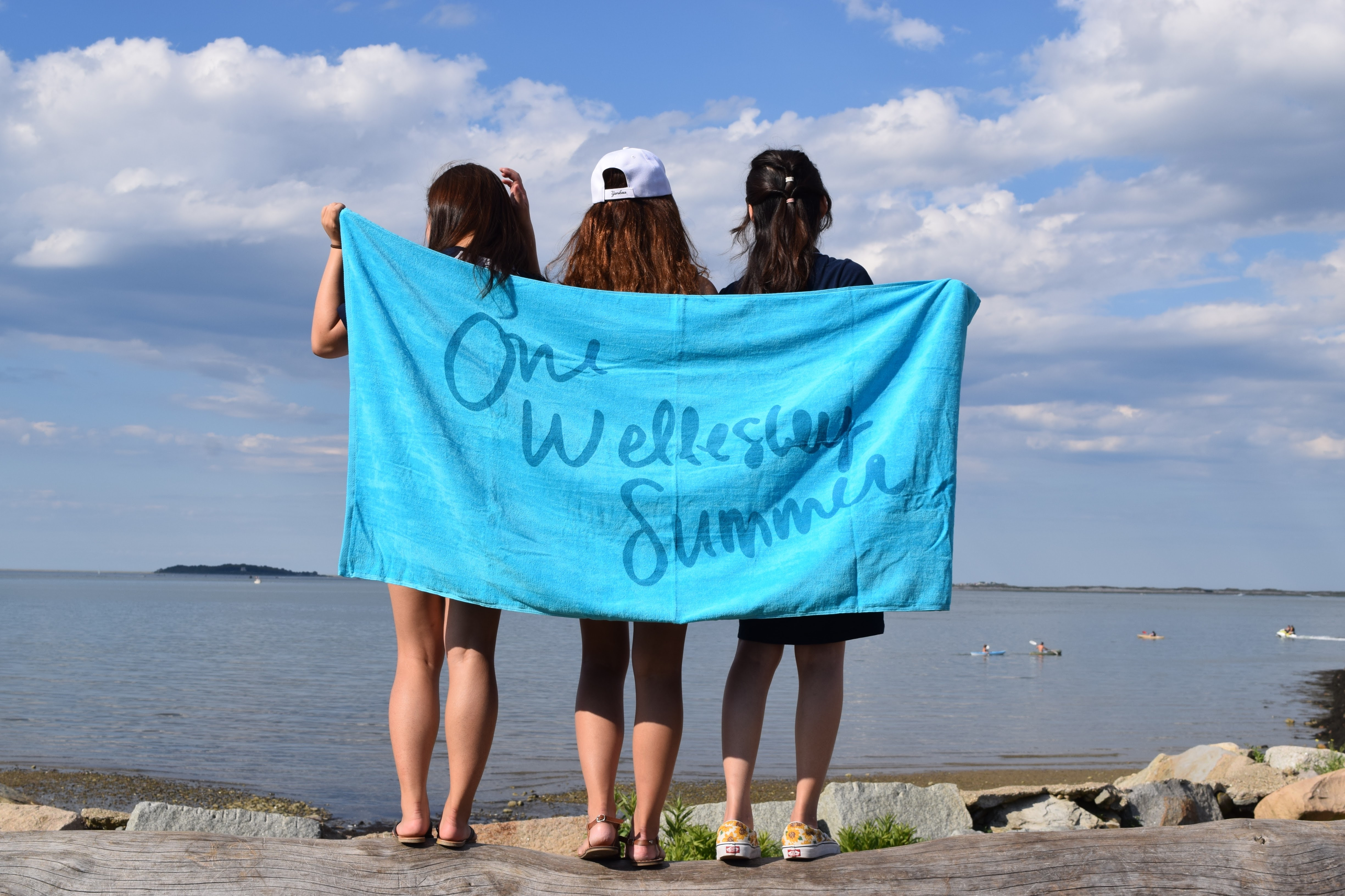 Summer Program - College Experience | Wellesley Pre-College Residential Summer Programs