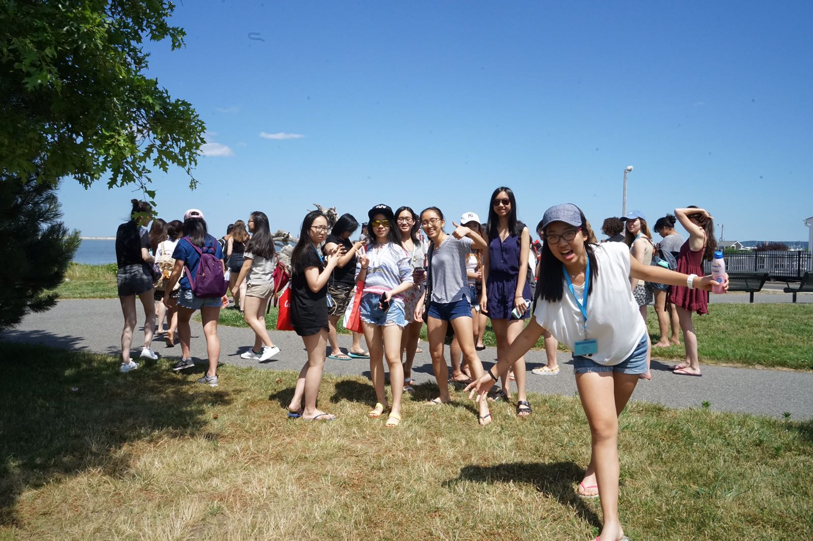 Summer Program - STEM | Wellesley Pre-College Residential Summer Programs