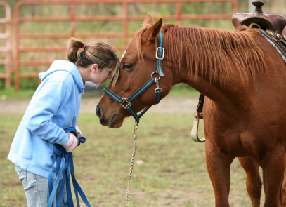 Business - Residential Treatment | Yellowstone Boys and Girls Ranch